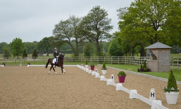 Dressage – individual or shared lessons -13/11/21