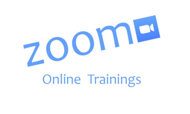 Mini Behaviour Badge online